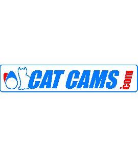 Arbre à cames CATCAMS - F4R.730/830 : CLIO 2 et 3 RS / slipper kit complet